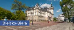 Bielsko-Biała kurs pierwszej pomocy